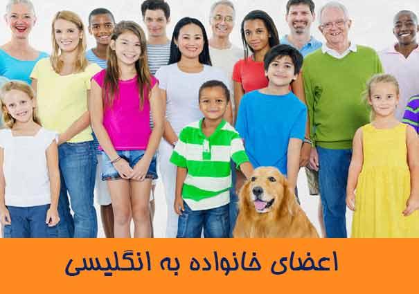 اعضای خانواده به انگلیسی